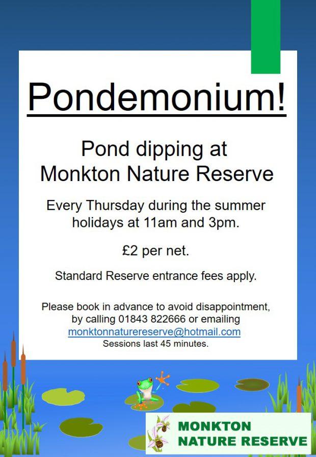 Pond Dipping 'Pondemonium'!