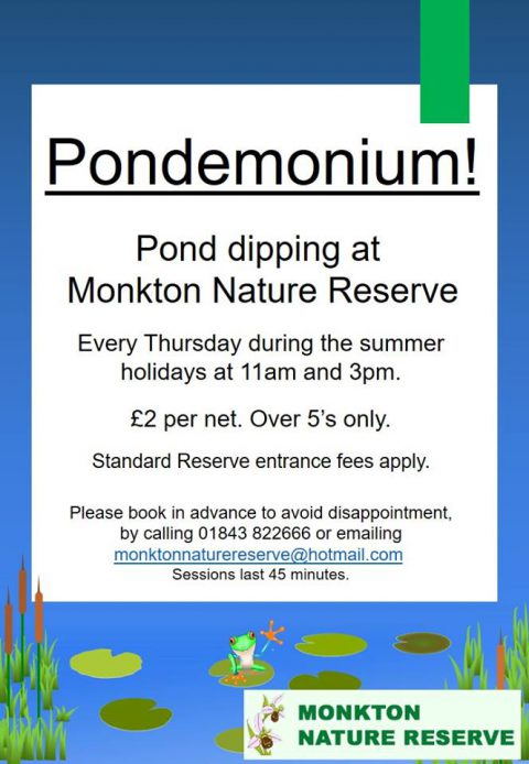 Pond Dipping at Monkton Nature Reserve