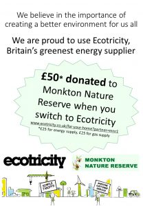 Poster of Ecotricity deal